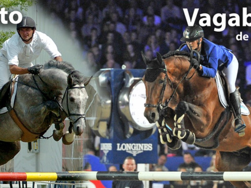 ET auction : Malito de Reve x Kashmir van Schuttershof x For  Pleasure