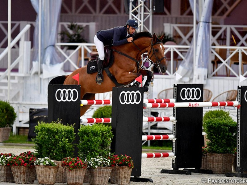 Exquise du Pachis 5th in 1m 55 GP CSI3* Zandhoven, 6th in 1m50 LR, 10th in 1m45