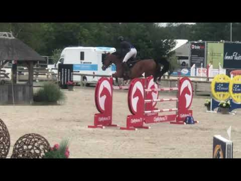 Exquise du Pachis 3th in 1m45 GP Gold League Azelhof