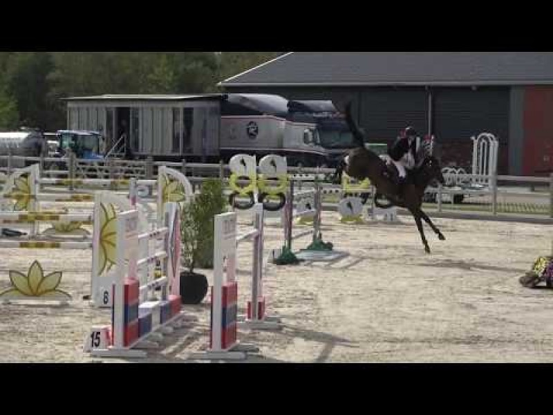 Cristel M ninth in Grand Prix 1m45 CSI2* Peelbergen 4/08/2019
