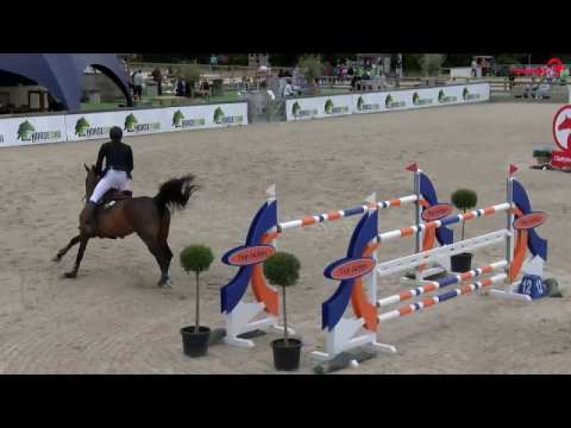 Cristel M and Exquise du Pachis clear in GP 1m45 CSI2* Lier.