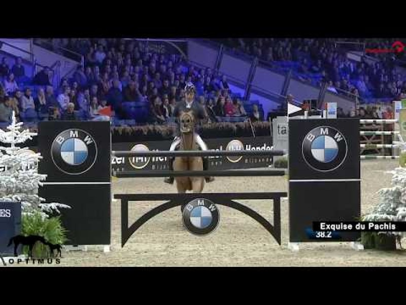 Exquise du Pachis 5th in the GP CSI2* Mechelen.