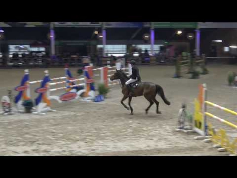 Lady Optima double clear in Final CSIYH 21/10/2018