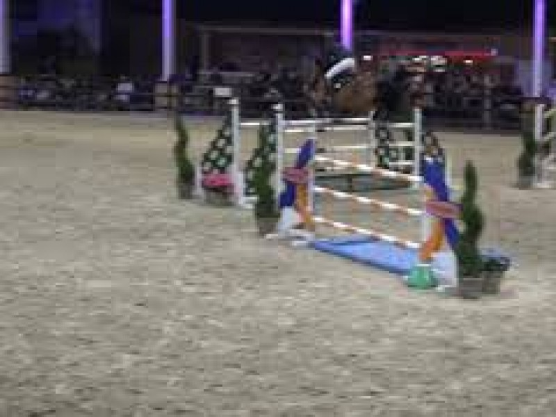 Exquise du Pachis 1m45-1m50 Grand Prix CSI2* Lier