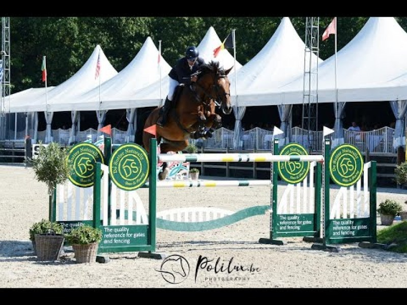 Exquise du Pachis - 5th in 1m55 GP CSI3* Zandhoven -  6th in 1m50 LR - 10th in 1m45