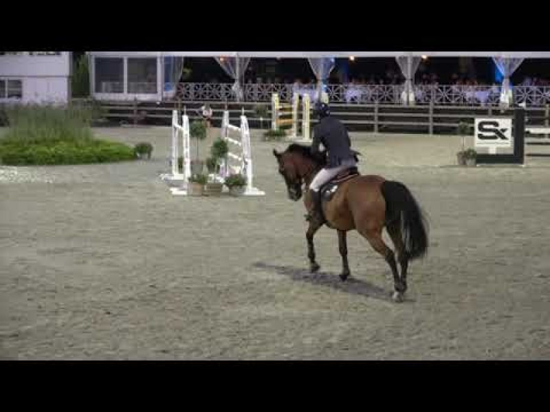 Exquise du Pachis 6th in 1m50 LR CSI3* Zandhoven