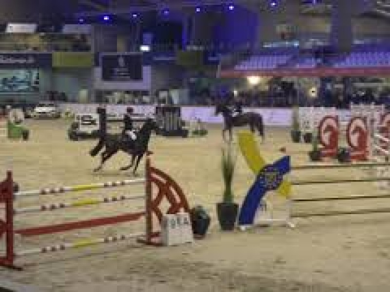 Clean round for AD Blanez in Grand Prix CSIJ Opglabbeek